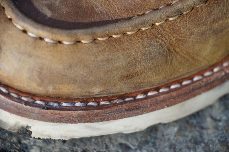 A close up shot of the Thursday diplomat welt