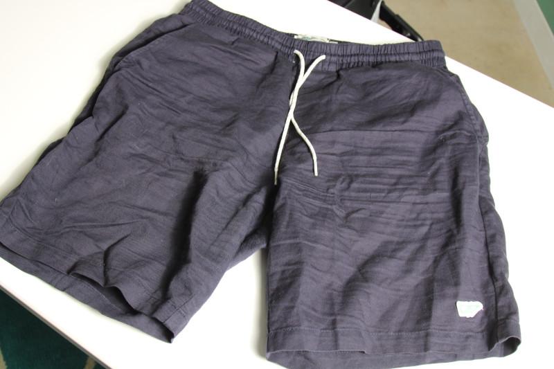 Wellen Blue Shorts